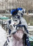 Disguised Person - Annecy Venetian Carnival 2013 Stock Images