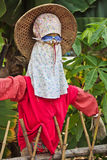 Disguised Scarecrow Stock Image