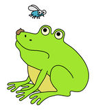 Disgusted frog. Waiting for fly. Funny cartoon illustration Stock Photos