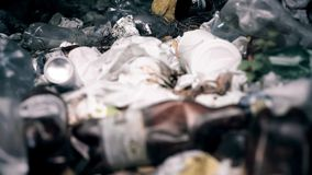 Disgusting garbage polluting soil and forests, urgent environmental problem. Stock photo royalty free stock photo