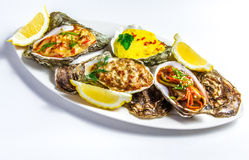 Dish with baked oyster shell cheese, salad oysters, served green Stock Photography