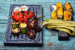 Dish of baked vegetables royalty free stock images