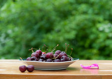 Dish berry Stock Image