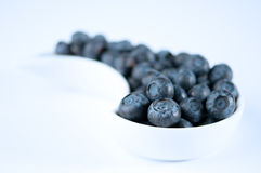 Dish Of Blueberries royalty free stock photography