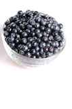 Dish with blueberries Royalty Free Stock Photo