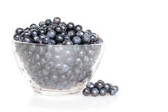 Dish with blueberries Royalty Free Stock Photos