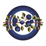 Dish with blueberry branch and leafs Stock Photo