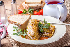 Dish of cabbage stuffed with meat. Royalty Free Stock Photos
