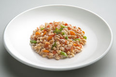 Dish of 3 cereal with Vegetables. Dish of Rice spelled barleyl with Vegetables Stock Image