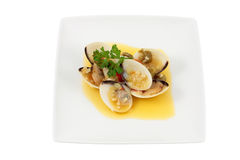 Dish of clams. In wine sauce and olive oil with chopped parsley and garlic pepper onion cut off and isolated Royalty Free Stock Photos