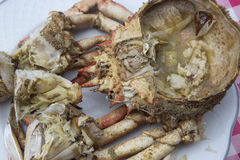 Dish cooked crab Royalty Free Stock Images