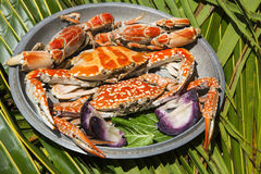 Dish with cooked crabs Royalty Free Stock Photos