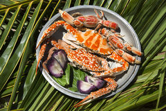 Dish with cooked crabs Stock Photography