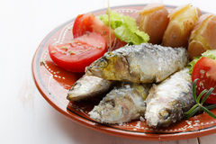 Dish of cooked sardines with salt Royalty Free Stock Image