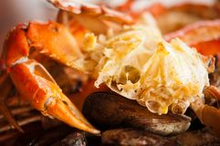 Dish with crab and mussels Stock Photography