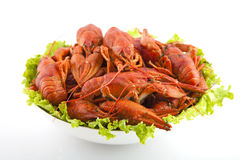 Dish of crayfish. With salad leaves Royalty Free Stock Photography