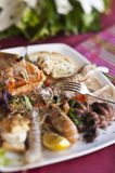 Dish of crustaceans and shellfish Stock Photography
