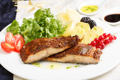 Dish of a delicious roasted salmon fillet Royalty Free Stock Photos
