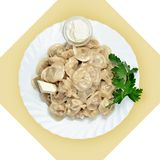 Dish with dumplings on white plate. Stock Photos