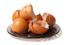 Dish with egg shells Royalty Free Stock Images