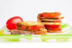 Dish of eggplant, tomatoes and garlic. Royalty Free Stock Photos