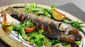 Dish of fish, green salad, lemon on a plate Stock Image