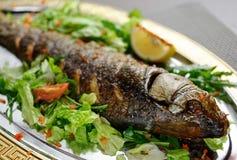 Dish of fish, green salad, lemon on a plate Royalty Free Stock Photos