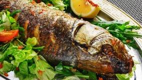 Dish of fish, green salad, lemon on a plate Stock Photos