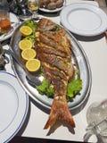 Dish, Food, Seafood, Animal Source Foods royalty free stock photography