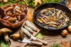 Dish with forest mushrooms and onions Royalty Free Stock Photography