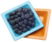 Dish of Fresh Blueberries Royalty Free Stock Photos