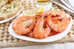 Dish of fresh boiled shrimps. On a table Royalty Free Stock Photo