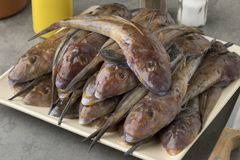 Dish with fresh raw flathead fishes. Dish with fresh cleaned raw flathead fishes Royalty Free Stock Photography