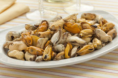 Dish with fresh cooked mussels Royalty Free Stock Photos