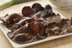 Dish with fresh jews ear mushrooms Stock Photos