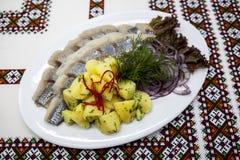 Dish with fresh Norwegian herring with potatoes and fresh onions. Dish with fresh Norwegian herring with potatoes and fresh onions Stock Images