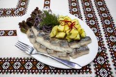 Dish with fresh Norwegian herring with potatoes and fresh onions. Dish with fresh Norwegian herring with potatoes and fresh onions Royalty Free Stock Photos
