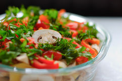 Dish of fresh vegetables. And mushrooms Royalty Free Stock Image