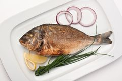 Dish of fried fish. With onions royalty free stock photography