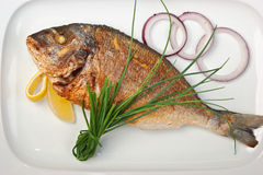 Dish of fried fish with onions Royalty Free Stock Images