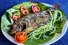 Dish of fried fish Royalty Free Stock Photo