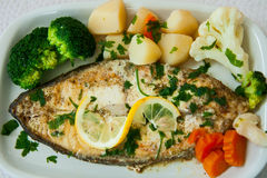 Fried fish with vegetables. Dish of fried fish with vegetables Stock Photos