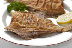 Dish with fried plaice Stock Photography