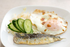 A dish of fried sardine with salada and egg Royalty Free Stock Image