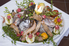 A dish full of sea food Royalty Free Stock Photography