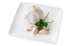 Dish with garlic. Dish of garlic with teeth and head of garlic with parsley cut off and isolated Stock Photos
