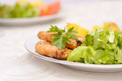 Dish with grilled pork loin, salad and potatoes. Decorated with parsley leaf Royalty Free Stock Photos