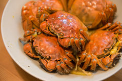 A dish of hairy crabs. Indoor shooting Royalty Free Stock Photography