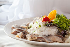 Dish with herring and cream Stock Images
