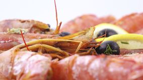 Norwegian lobster with rice stock video footage